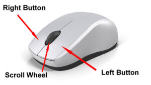 mouse-me-kitne-button-hote-